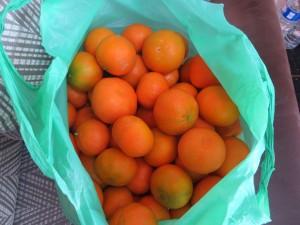 Bijna 7 kg mandarijnen
